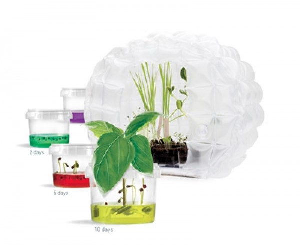 Gewächshaus BioGlobe Ökosystem Moon Greenhouse