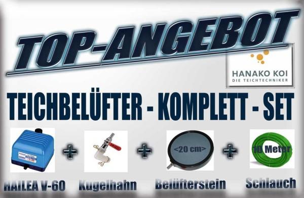 HAILEA V-60 Belüftungs-Set 3600 l/h (Pumpe+Kugelhahn+Belüfterplatte+Schlauch)