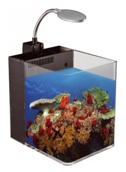 Nano Qube HAD-280 (15 L / schwarz) Aquarium Set mit LED Beleuchtung