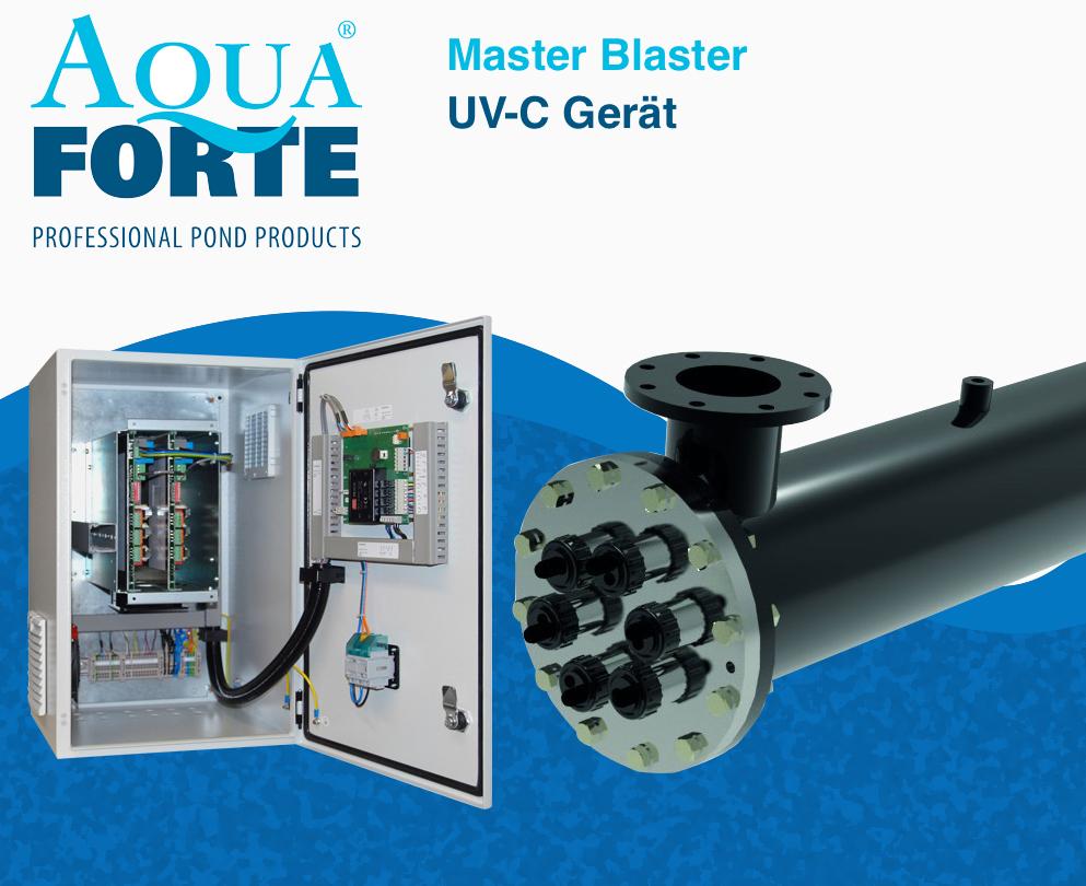 masterblaster56e5771507a76