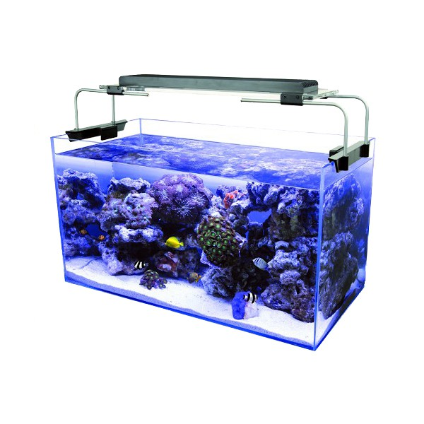 zetlight aqua aquarium led beleuchtung aquariumlampe aufsetzleuchte led aquariumleuchten. Black Bedroom Furniture Sets. Home Design Ideas