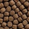 Pondlife Koi Health 15 kg - Immunstimulanzfutter