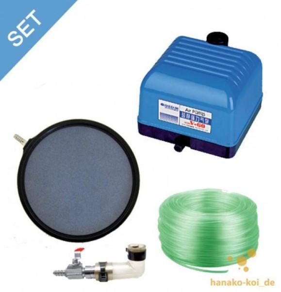 V - 60 Belüftungs - SET - 3600 l/h (Pumpe+Belüfterplatte+Luftverteiler+Schlauch)