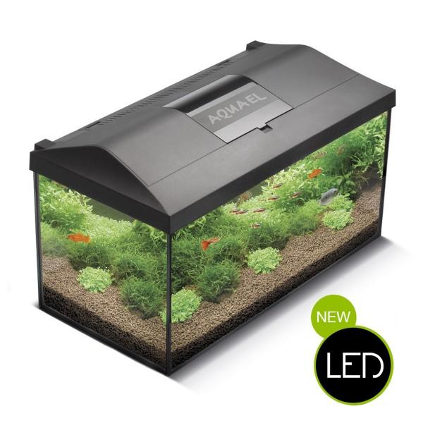 Aquarium Komplettset Mit Led Beleuchtung | Aquael Leddy Aquarium Komplett Set Led Beleuchtung Standard