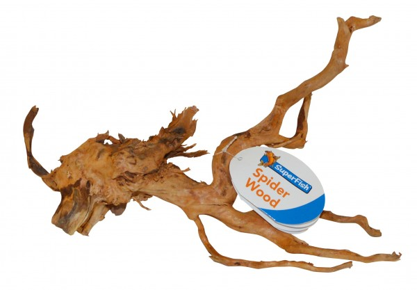 superfish-spiderwood