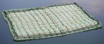 Schwimmende Pflanzinsel /PHYTOFILTER Rechteckig 121x85