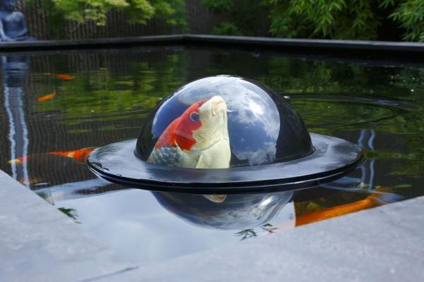 Velda Teichdekoration Beobachtungskugel Floating Fish Sphere L