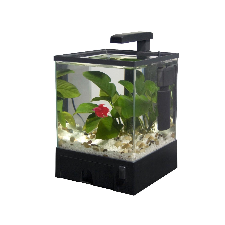 Aquabox led nano aquarium komplett set 22x19x29 5cm for Kampffisch aquarium