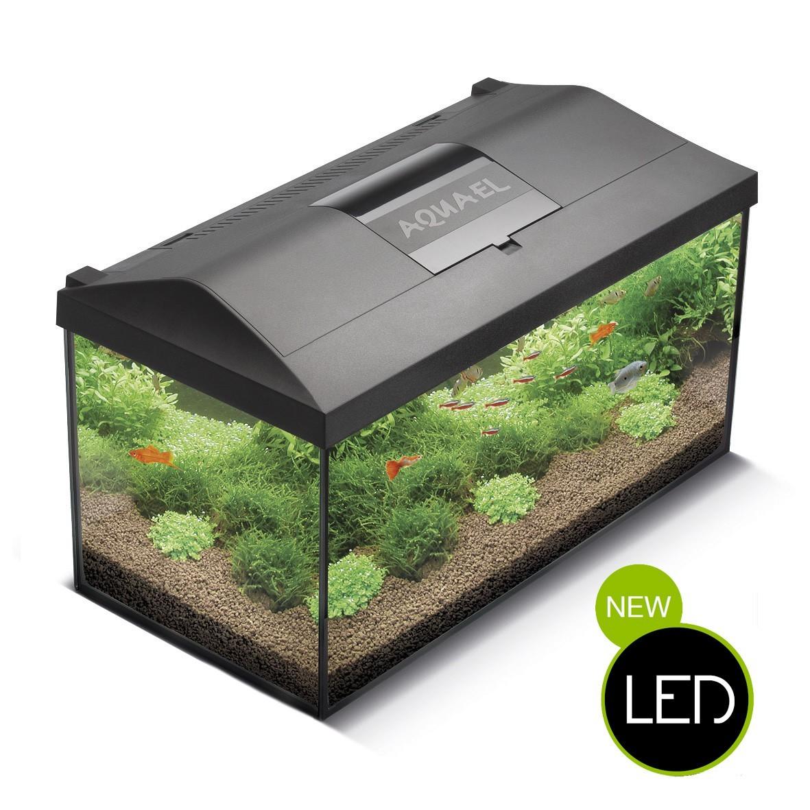 Relativ Aquael Leddy Aquarium Komplett-Set - LED Beleuchtung | Standard  GT99