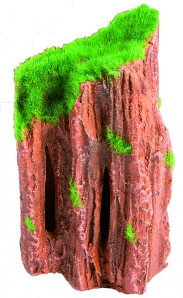 Superfish Fossil Wood