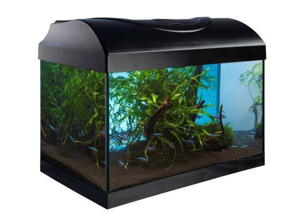 Superfish Home 8 - LED Komplett Set Nano Aquarium 8 Liter (schwarz o. weiß)